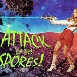 Kill Spores Mold in Home